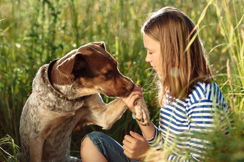deve amare i cani sito di incontri