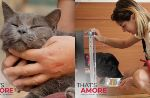 That's amore, il docureality sugli animali